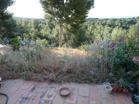 庭の草刈り 南仏