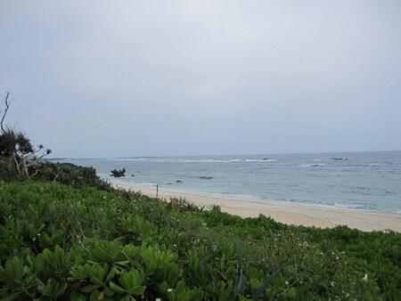 道から見える品覇海岸
