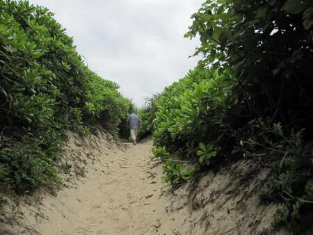 宮古島 砂山に行く道