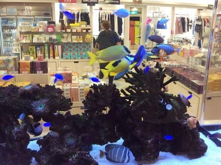 東急ホテル お土産売り場の熱帯魚