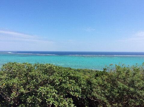 玉取崎展望台から見えた海
